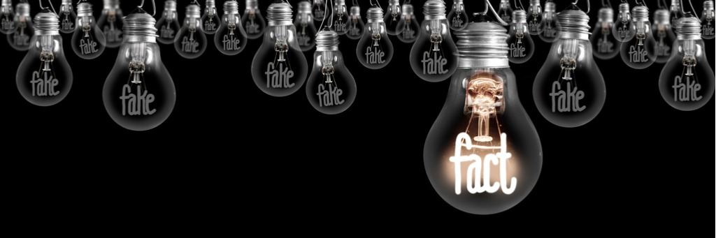 light-bulbs-with-fake-and-fact-concept-picture-id1222022432
